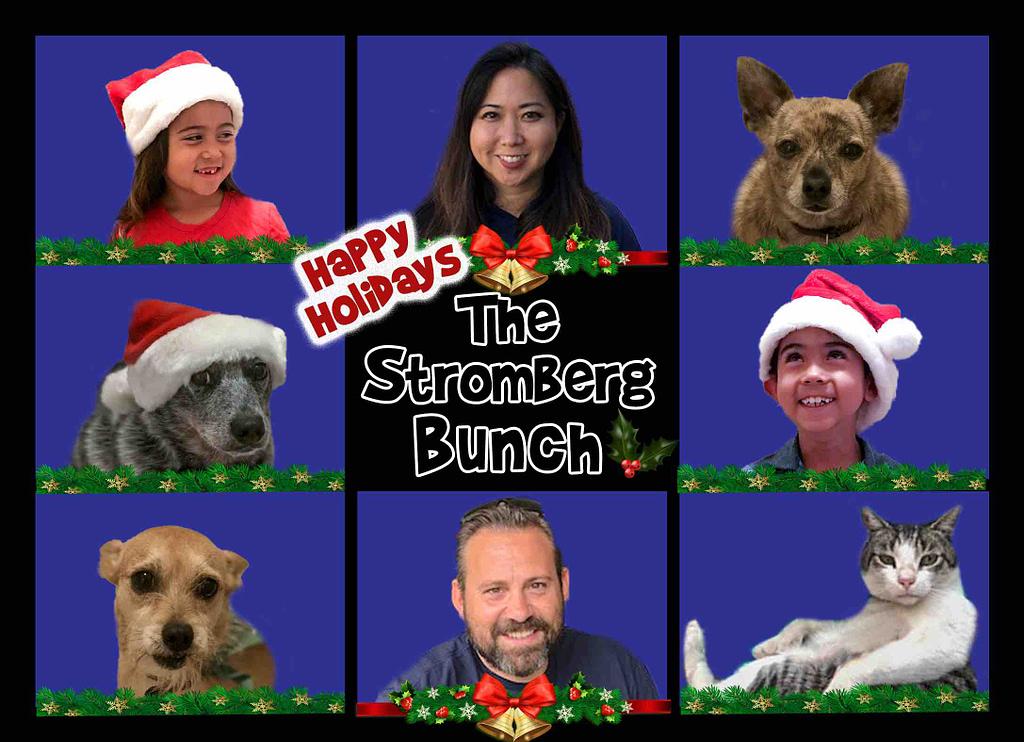 Funny Brady Bunch Christmas Card